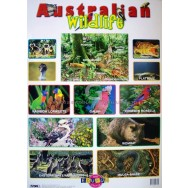 Australian Wildlife Chart
