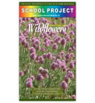 Australian Wildflowers Project Book